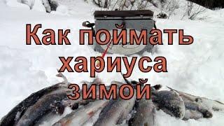 Ловля хариуса зимой в башкирии