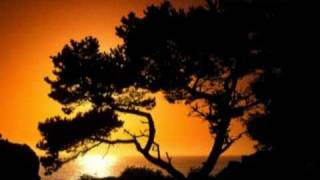 Grateful Dead - Lost Sailor / Saint of Circumstance 1982