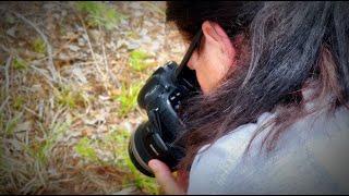 Celebrating Nature Photography Day on Florida's Adventure Coast (2021)