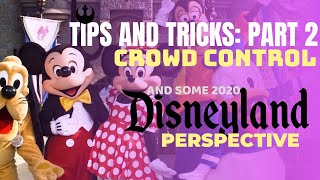 TIPS AND TRICKS 2: Crowd Control - And Some 2020 Disneyland Perspective!