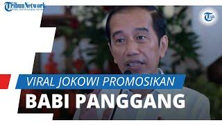 Viral Video Pidato Jokowi Promosi Olahan Babi Bipang Ambawang Jelang Idulfitri, Ini Tanggapan Mendag