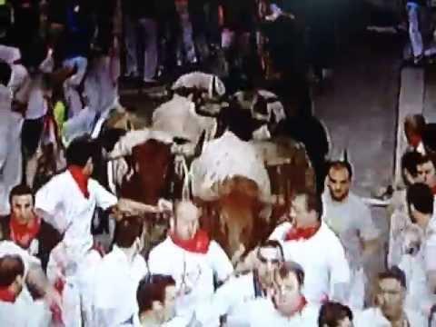 Bull Run 11.07.2013 { Pamplona } 5