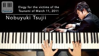 Elegy for the victims of the Tsunami of March 11, 2011 - Nobuyuki Tsujii