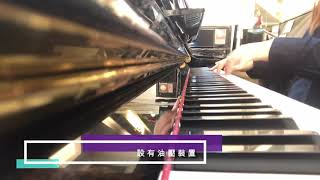 永遠常在Always with me piano cover.亞洲鋼琴城