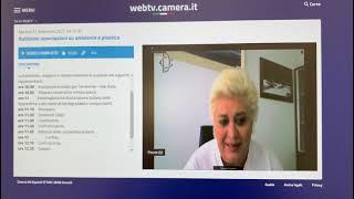 Direttiva SUP. Intervento del Vice Presidente Confcommercio Donatella Prampolini. Audizione alla Camera dei Deputati. 21 settembre 2021