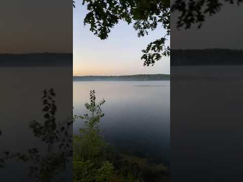 Video Of Newaygo, MI