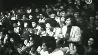 להקת כוורת בצוותא  - 1975