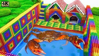 Build Underground House, Swimming Pool For Crab From Magnetic Balls ( Satisfying ) | Magnet ASMR