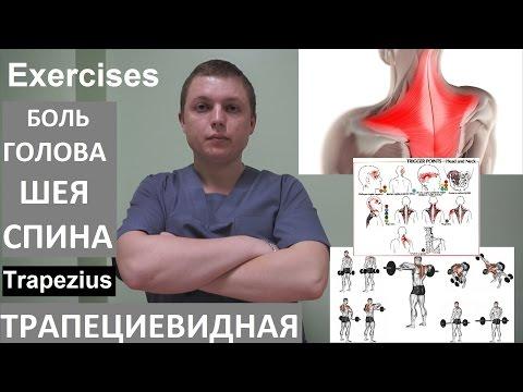 Le bodybuilding le championnat moskvy 2014