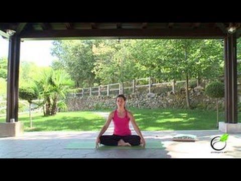 Clases de yoga on line gratuita para principiantes c mo hacer yoga en casa unrespiroes - Clases de yoga en casa ...