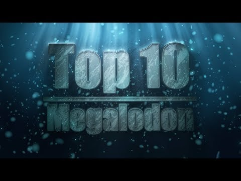 Top 10 Verified Facts About Megalodon