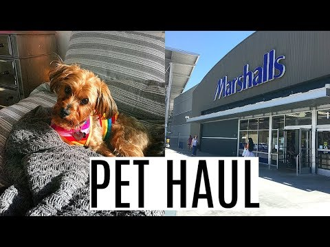 Dog Update, Crate Training & Shopping Haul | LeeRoy