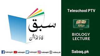 Biology Class 9 Digestion,Teleschool | Sabaq.pk  - Download this Video in MP3, M4A, WEBM, MP4, 3GP