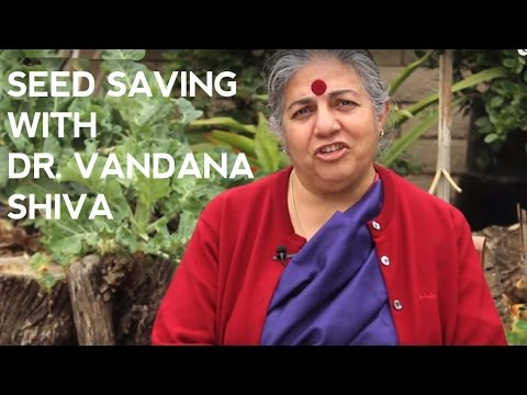 Saving Seeds at Home with Vandana Shiva