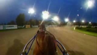 preview picture of video 'Toisenlainen näkökulma hevosen lämmityksestä'