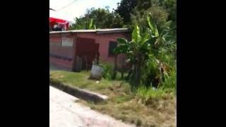 preview picture of video 'The Road to Belize City'