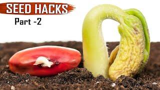 GARDEN TIPS & Hacks: TOP 25 Seeds & Seedlings Gardening Hacks DIY Ideas Tricks Compilation   Part 2