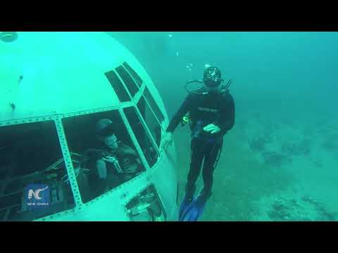 Diving into aircraft under sea in Jordan