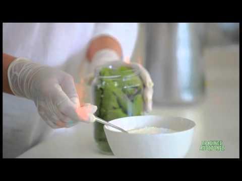 Συντήρηση αμπελόφυλλων - Πράσινες αποστολές - ΣΚΑΪ