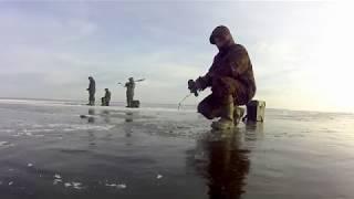 Все о зимней рыбалке в чебоксарах
