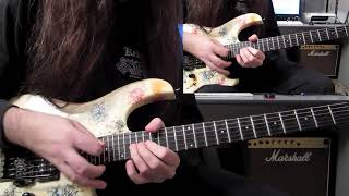 Guitar videos - DANIELE LIVERANI - Survive
