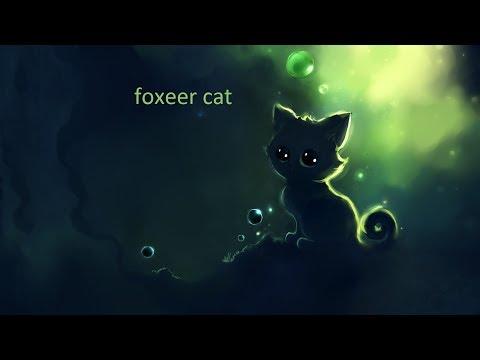 Test FPV camera Foxeer Cat