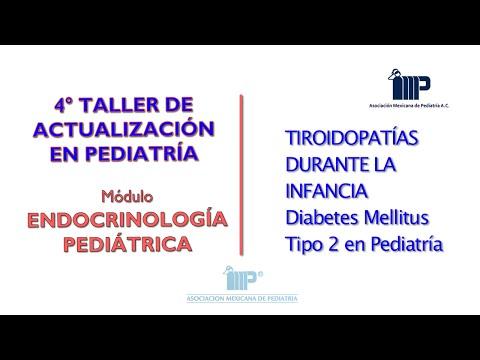 Diabetes tipo 2 o pâncreas