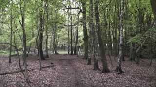 preview picture of video 'SWC Free Walk 140, Wendover to Great Missenden. 20/5/12.'