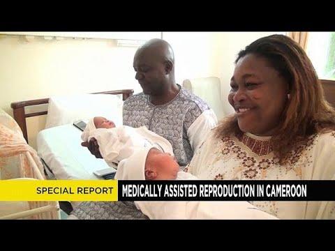 Au Cameroun, plus de 800 bébés grâce à la procréation médicalement assistée