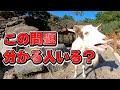 【激ムズ】鳴き声当ててみ?最後に飼育員の心の叫びがあります。【QUIZ】Which voice is Goat and Sheep