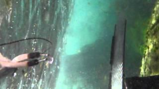 Pescasub en Galicia. Sargo al agujero 2