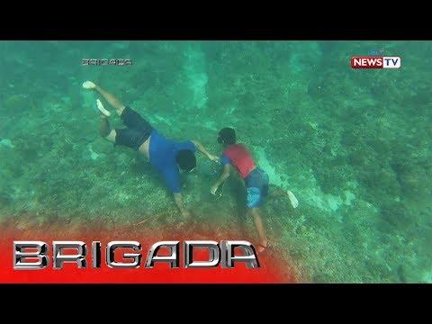 Kapag ito ay posible na lason worm sa mga kuting