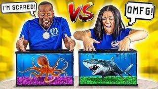 WHAT'S IN THE BOX CHALLENGE - UNDERWATER OCEAN ANIMALS