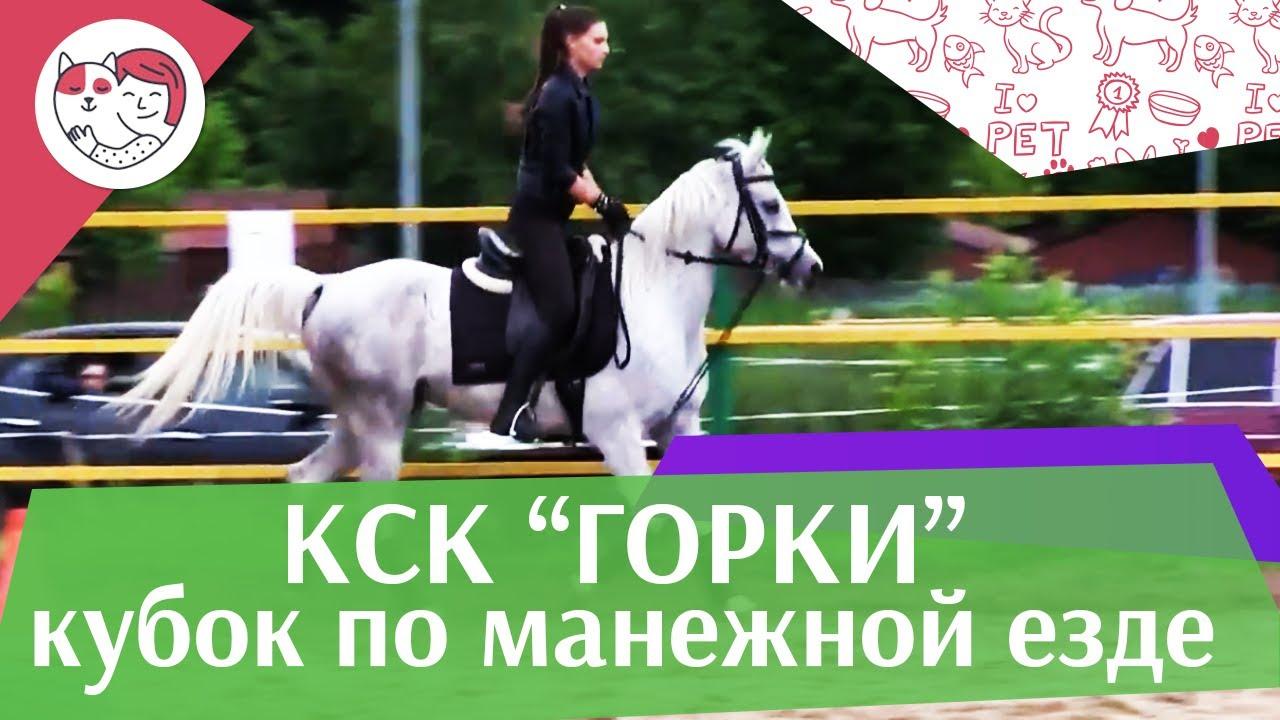 Летний кубок КСК Горки по манежной езде КЮР часть 31 на ilikepet