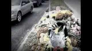 соня сивакова похороны фото