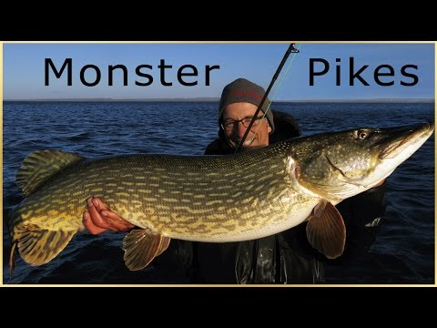 Fly Fishing for Monster Pike