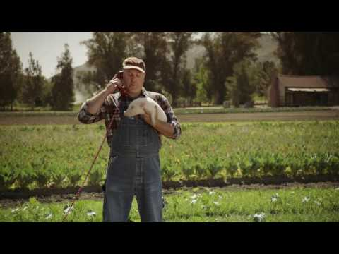 SafeAuto Commercial (2017) (Television Commercial)