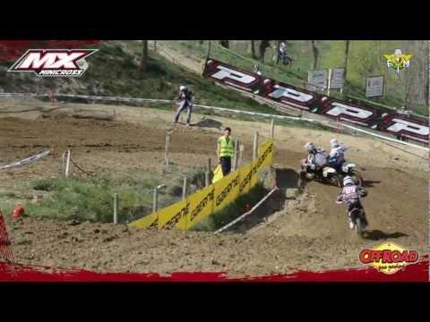 Preview video Senior gara 2