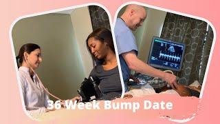 36 Week Bump Date!