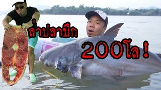 ล่าปลาบึก 200กิโล!!  [หัวครัวทัวร์ริ่ง] EP.15