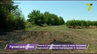 Охота в персиковом саду в селе Петровка Одесской области: пострадали 3 человека