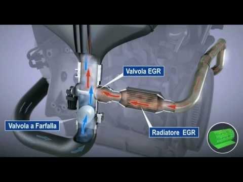 Operazione di collina su un varicosity