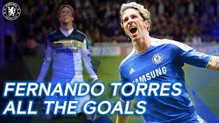 Fernando Torres: All the Goals