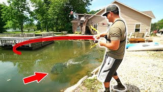 BACKYARD POND Is LOADED With Trophy Size Fish!! (NEW PET)