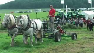 PferdeStark 2017: Präsentation Landwirtschaftlicher Zuggeräte Sowie Leistungspflügen