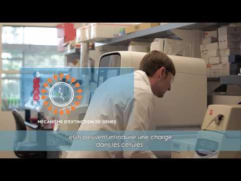 Lopération de léloignement de la varice variqueuse par le laser