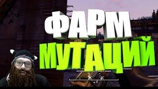 Fallout 76: ФАРМ МУТАЦИЙ, ПЕРКИ, ПОКУПКА, ТОПОВОЕ МЕСТО, ГАЙД