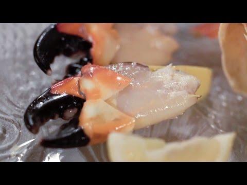 Best Seafood in Las Vegas - Peiro's Italian