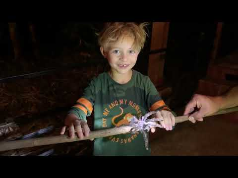 Familiereis Ecuador Stijn vlog