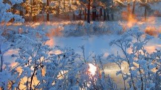 #Белоснежное Царство   Snow-white kingdom  / #Супер мелодия  Раймонда Паулса/ (саксофон)